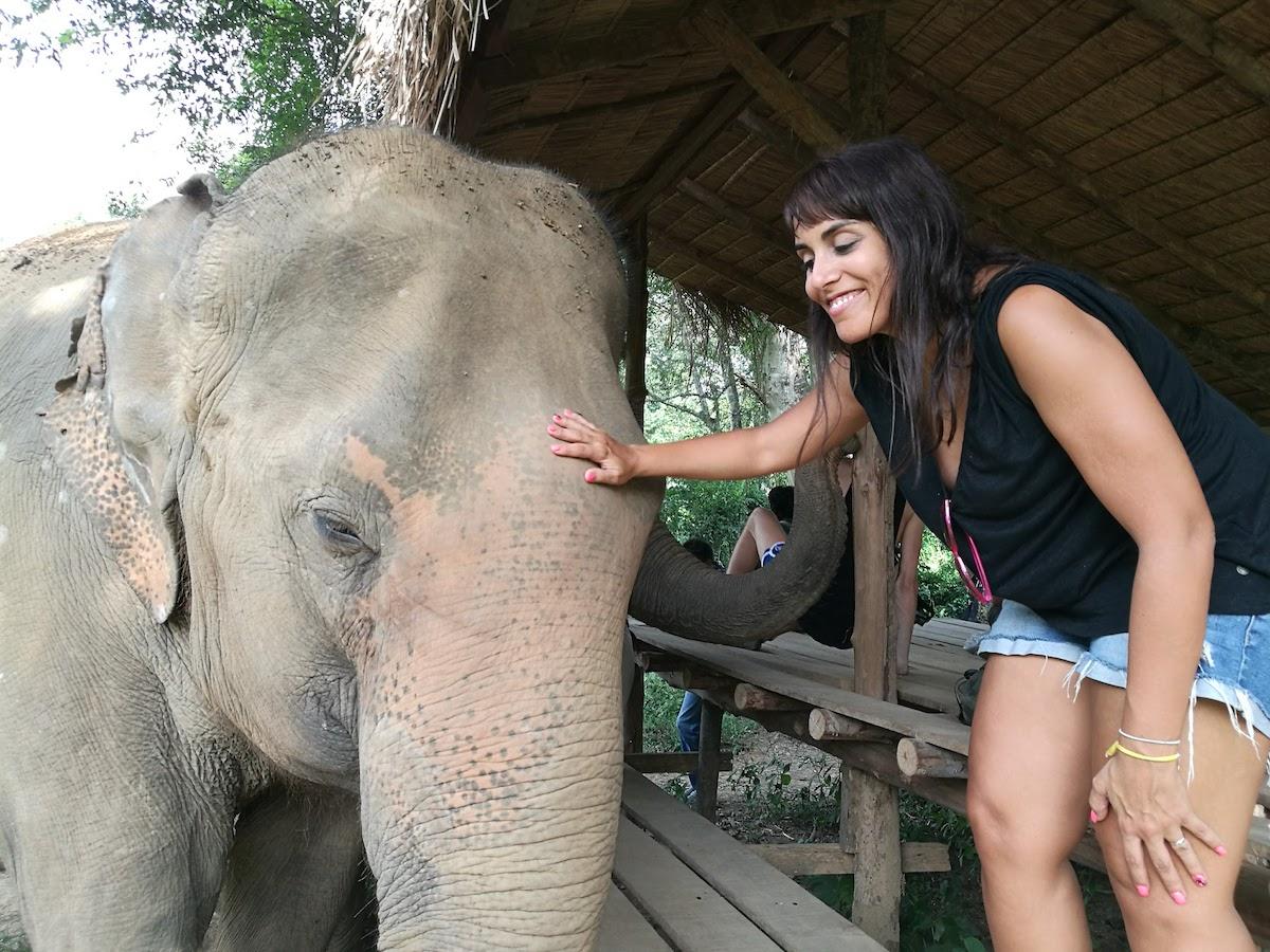Elephant Haven, un santuario de elefantes en Kanchanaburi