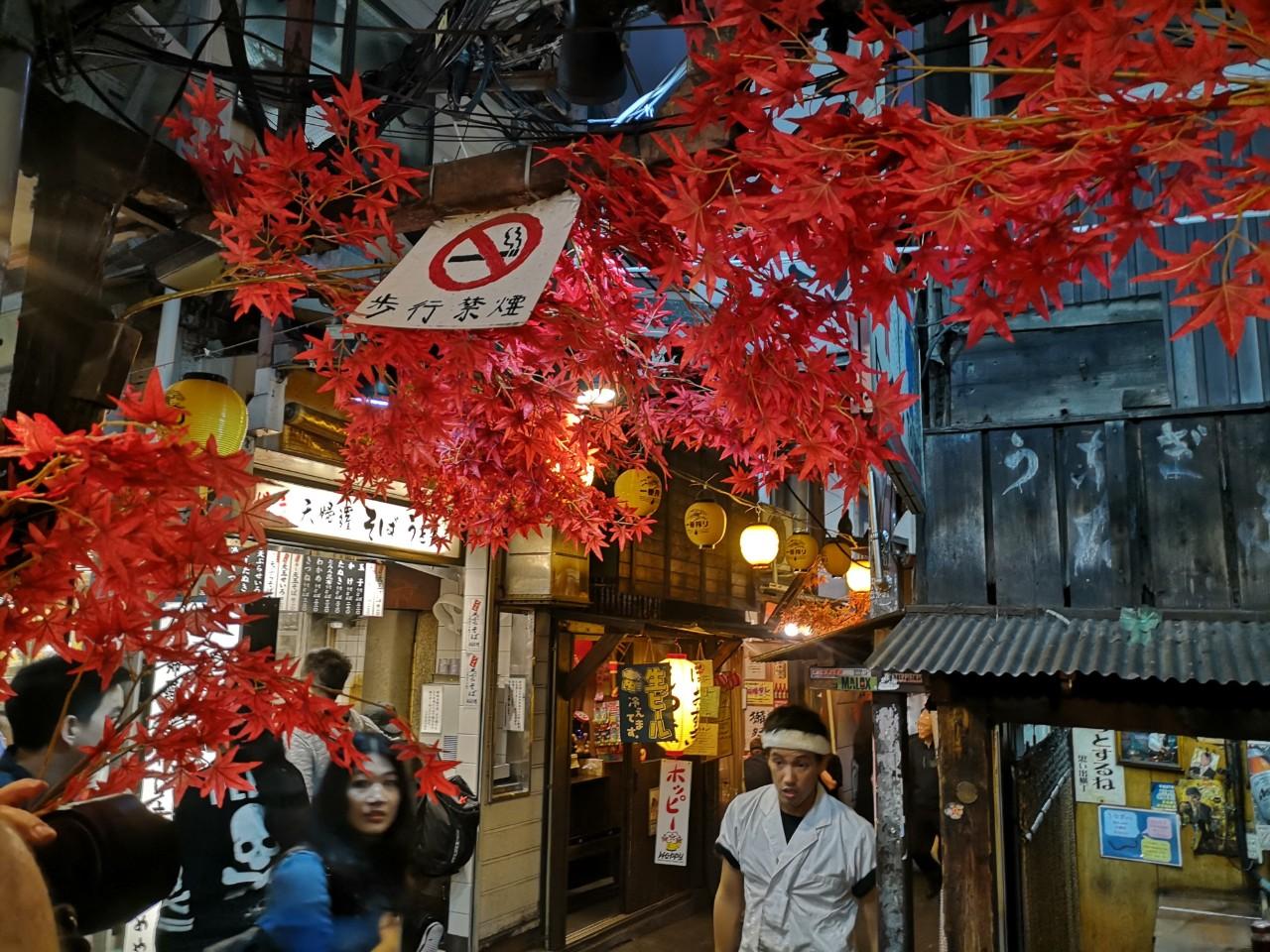 Omoide Yokocho Piss Alley